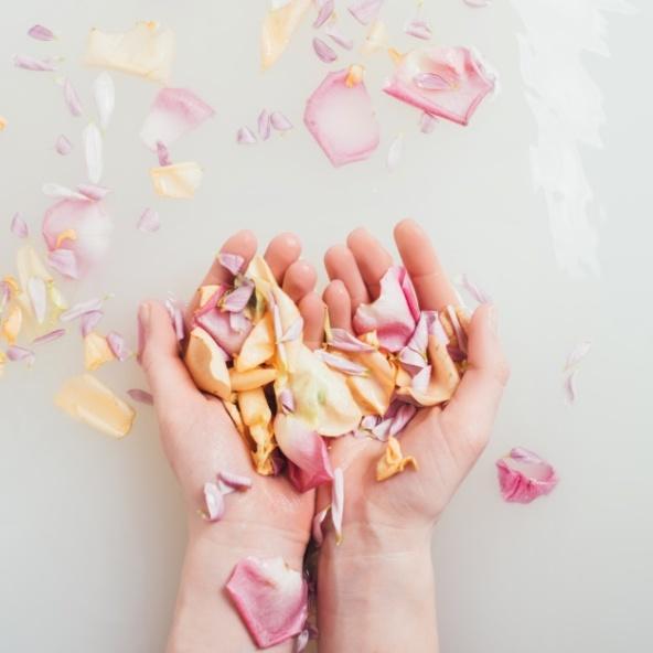 hands-holding-petals-in-water_23-2147648571.jpg